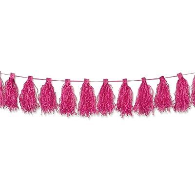 amscan Girls Paper Tassel Garland, 10', Bright Pink: Toys & Games