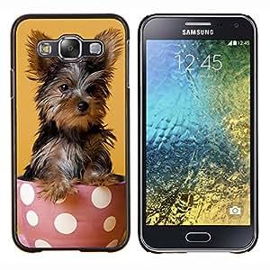 YiPhone /// Prima de resorte delgada de la cubierta del caso de Shell Armor - Yorkshire Terrier de mojón Raza - Samsung Galaxy E5 E500