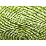 Stylecraft Batik Knitting Yarn DK 1910 Pistachio - per 50 gram ball