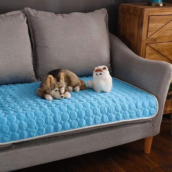 Amazon.com: Alfombrilla de verano para mascotas, almohadilla ...