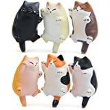 CHICHIC 6 Pack Fun Cat Refrigerator Magnets Office Magnet, Kitchen Decor Fridge Cat Ornament, Perfect for Whiteboard, Refrigerator, Map, Notes, Calendar, Gift for Lady Cats Lovers Novelty Butt