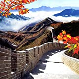 AOFOTO 8x8ft The Great Wall Backdrop Ancient Chinese Architectural Building Background Photography Studio Props China Travel Scenic Photo Shoot Video Drape Adult Boy Girl Portrait Seamless Wallpaper