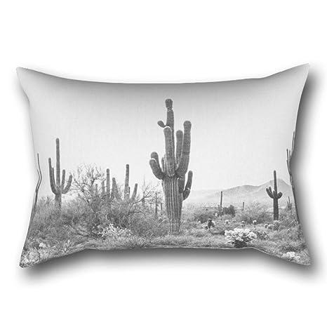 GYTOP Funda Cojín Desert Scottsdale Arizona Funda De ...