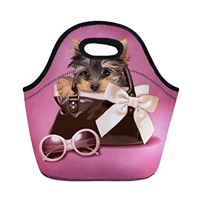 Tinmun lunch bags for women Kids Purple Yorkshire Handbag Yorkie Terrier Puppy Dog Cute Retro insulated lunch bag for women: Kitchen & Dining
