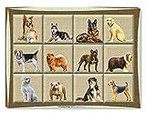 Large Dog Art Painting On Canvas
