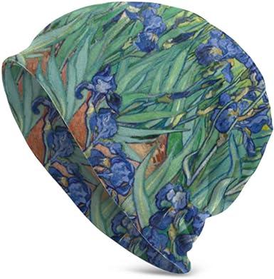 Vincent Van Gogh Painting Irises Growing In A Gard Gorro de Punto ...