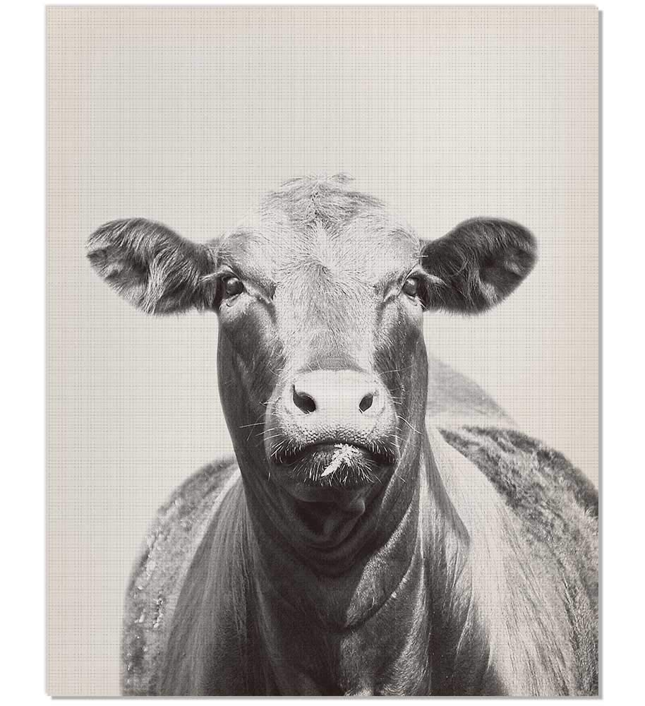 Black and white cow photography farm animal nursery cattle photography animal print nursery farmhouse wall decor black and white cow art animal