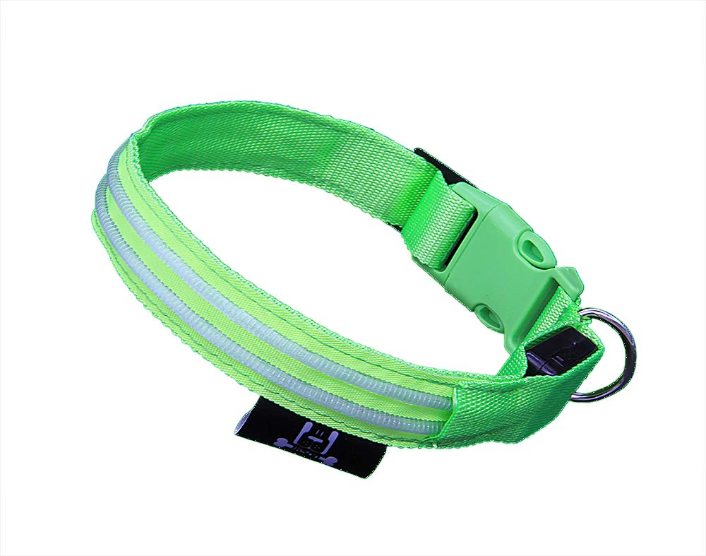 Green Medium& xFF08;13in-18.9in   33cm-48cm& xFF09; Green Medium& xFF08;13in-18.9in   33cm-48cm& xFF09; iKson LED Dog Collar with Rechargeable Batteries Adjustable Illuminated Pet Outdoor Walking Accessory (Medium(13in-18.9in   33cm-48cm), Green)
