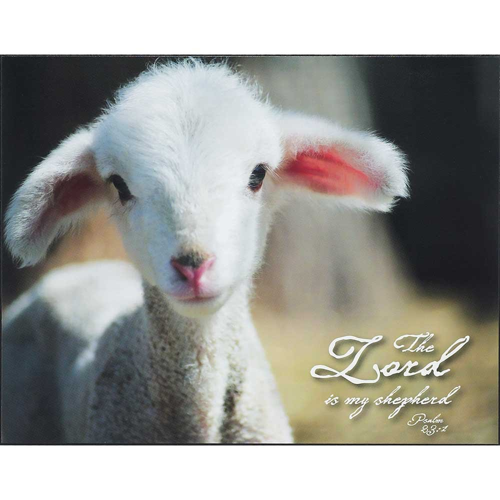 Dicksons The Lord Is My Shepherd Lamb Bright White 14 x 11 Wood Wall Sign Plaque