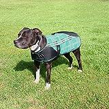 Kensington Plaid Dog Coat XL Lavender Mint