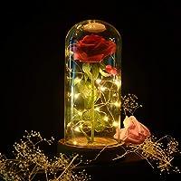 Verre de Rose Lumières, Rose Eternelle Romantique LED Lumière en Dôme Verre Artificielle Rose Rouge de Soie avec Base en Bois Magic Cadeaux pour la Saint-Valentin, Fête Anniversaire de Mariage