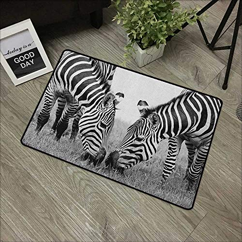 Printing Door Mat Animal,Zebras African Wildlife Burchell Safari Theme National Park Monochrome Picture, Black White,for Kitchen Dining Living Hallway Bathroom 35