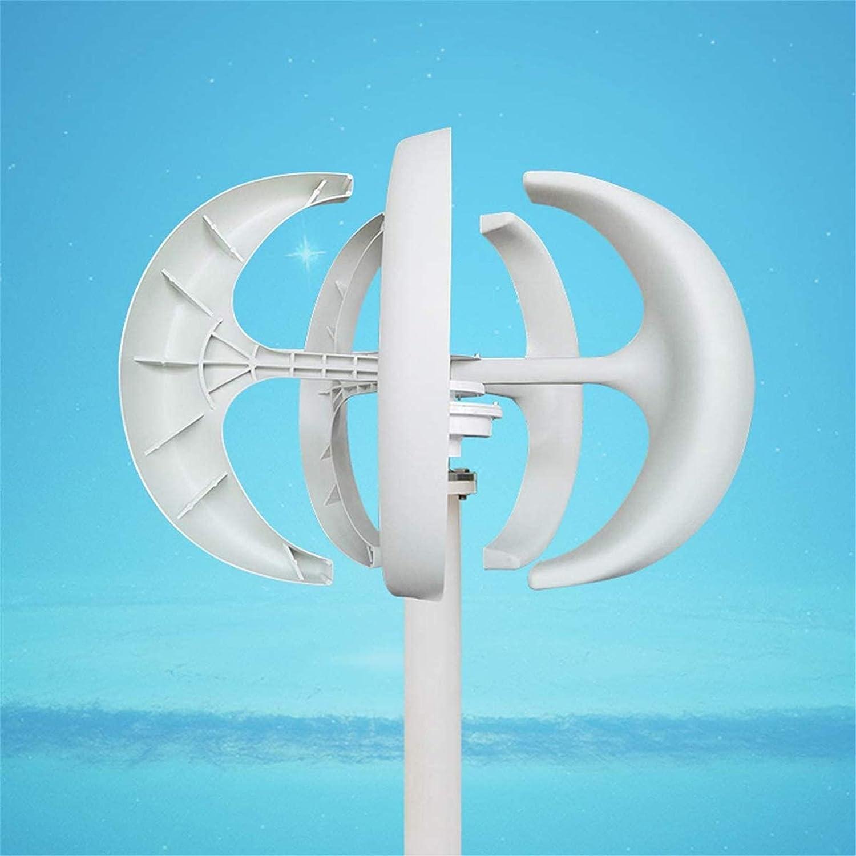 RDJM Turbina eólica Controlador de generador de turbinas de Viento Blanco 4000W 12V24V 5 Cuchillas Linterna Vertical a los Ejes for la Calle del hogar residencial, 24V, 2500W
