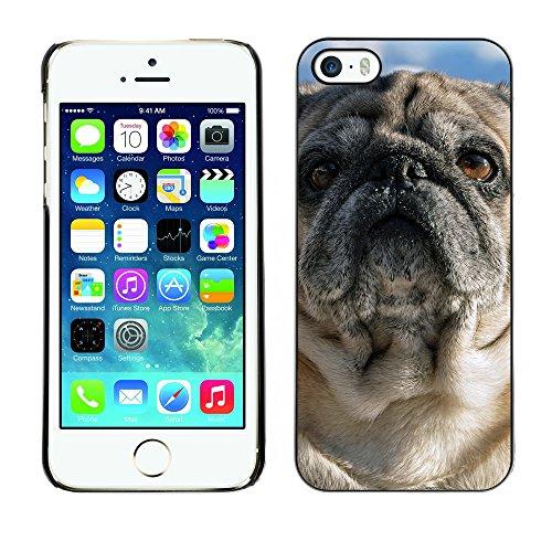 Premio Sottile Slim Cassa Custodia Case Cover Shell // F00024556 Puppy extérieure // Apple iPhone 5 5S 5G