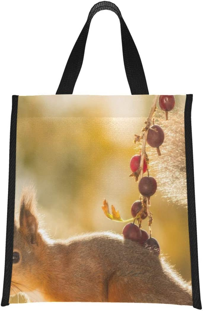 Tote Lunch Bag For Women Close Up Of Red Squirrel Standing On A Branch With Lunch Box Tote Cooler Bags For Women Reusable, Foldable Keeps Food Hot/cold For Women,men,school,office