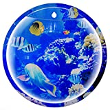 Image of Wall Fish Tank, Coxeer 9in Sea World Acrylic Wall Hanging Fish Tank Wall Mounted Fish Bowl Vase Flower Plant Pot Aquarium for Home and Office