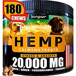 Kinpur Hemp Dog