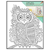 MCS Time-Out Color-In 10x13 Inch Framed Adult Coloring Page with Owl Design (65633)