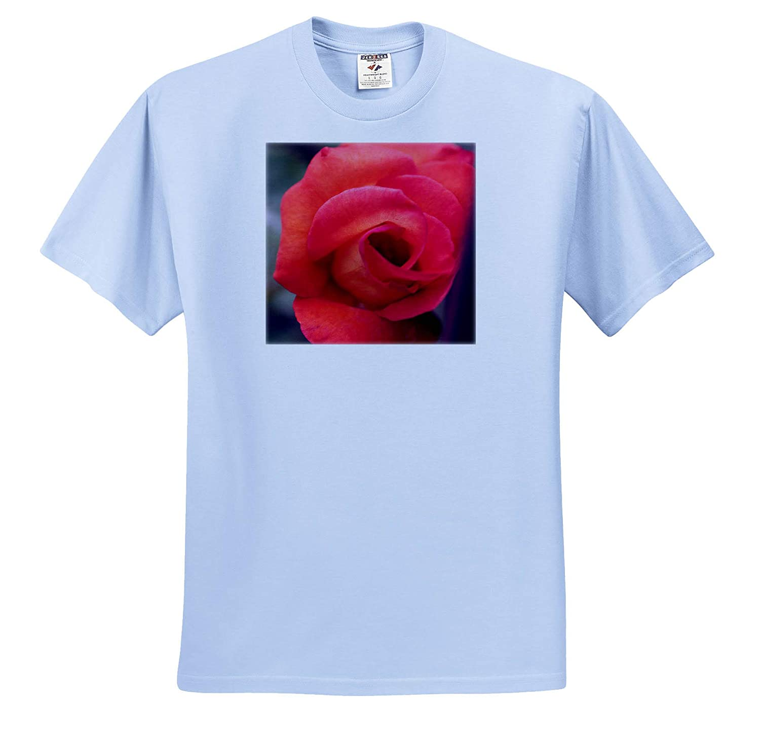 ts/_315582 Macro Photograph of a Playboy Rose About to Burst Open 3dRose Stamp City Flowers - Adult T-Shirt XL