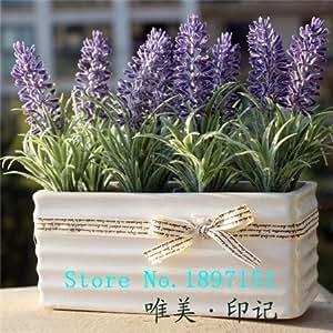 gran venta 200 semillas de lavanda francesa Provenza - semillas de flores muy fragantes