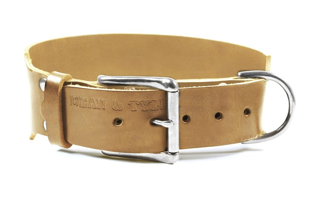 Dean and Tyler  B&B , Basic Leather Dog Collar with Chrome Plated Steel Hardware  Tan  Size 97cm by 6cm  Fits Neck 91cmes to 102cmes.