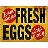 Cheap Fresh Eggs Farm Raised Vintage-Style Country Kitchen Sign 16 x 12 by Original Metal Sign