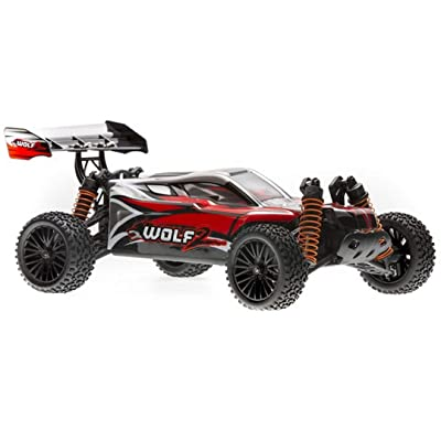 DHK Hobby 8138 Wolf 2 Buggy Ready to Run, 1/10 Scale, 4WD, with Battery, Charger: Toys & Games
