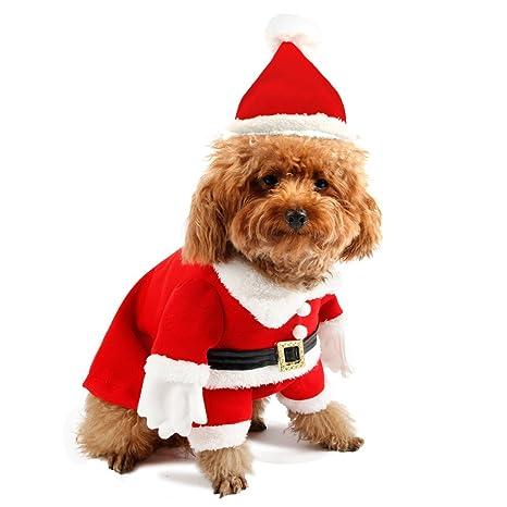 PAWZ - Disfraz de Papá Noel para Perro, con Capucha, diseño ...