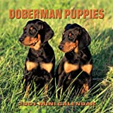 Doberman Puppies 2001 Calendar