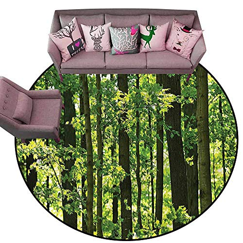 (Office Chair Floor Mat Foot Pad Nature,Refreshing Lush Maple Forest Diameter 72