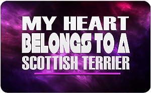 "Makoroni - MY HEART BELONGS TO A SCOTTISH TERRIER Rectangle Magnet, 2""x3"" Refrigerator Magnet"