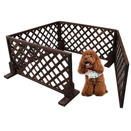Cachorro pesado cachorro jugar pluma- -La valla Perro valla ...