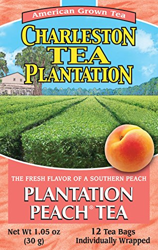 - American Classic Pyramid Teabags, Plantation Peach, 12 Count