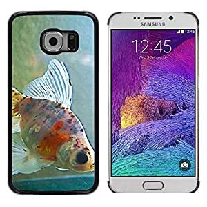 Hot Style Cell Phone PC Hard Case Cover // M99999052 Goldfish // Samsung Galaxy S6 EDGE (Not Fits S6)