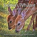 Joshua's Wisdom