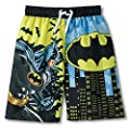 DC Comics Batman Boy Swimsuit Swim Trunk Size S 6