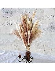 Total 60 Pcs | 15 Pcs White Pampas & 15 Pcs Brown Pampas & 30 Pcs Reed Grass/Natural Dried Pampas Grass for Flower Arrangements Home Decor