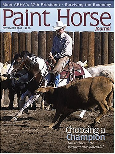 paint-horse-journal