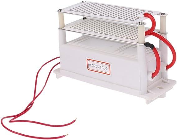Gazechimp Generador de Ozono de 220V 10G Dual Placa Purificador de ...