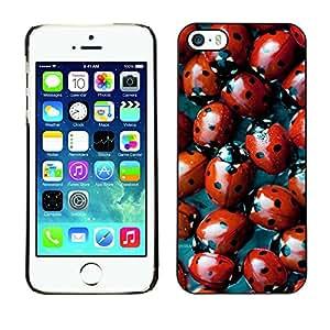 X-ray Impreso colorido protector duro espalda Funda piel de Shell para Apple iPhone 5 / iPhone 5S - Red Bug Spots Pattern Nature