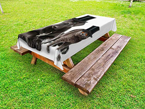 Ambesonne Dog and Cat Outdoor Tablecloth, Cane Corso and a Kitten in Cylinder Magician Hats, Decorative Washable Picnic Table Cloth, 58 X 104 Inches, Charcoal Grey Cinnamon Sea Blue Dimgray