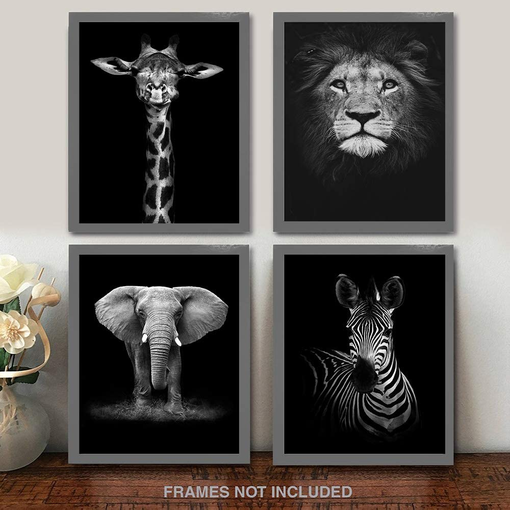 "Modern Black and White Décor Canvas Wall Art,Animals Picture Prints,Lion,Elephant,Zebra,Giraffe Painting Printed on Canvas,Wall Decoration 11""x17"" Unframed Set of 4 Prints"