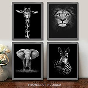 """Modern Black and White Décor Canvas Wall Art,Animals Picture Prints,Lion,Elephant,Zebra,Giraffe Painting Printed on Canvas,Wall Decoration 11""""x17"""" Unframed Set of 4 Prints"""