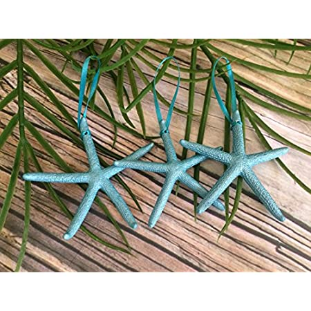 610XBj-yqgL._SS450_ Beach Christmas Ornaments and Nautical Christmas Ornaments