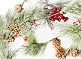 Best Christmas Garlands - CraftMore Christmas Smokey Pine and Red Berry Garl Review