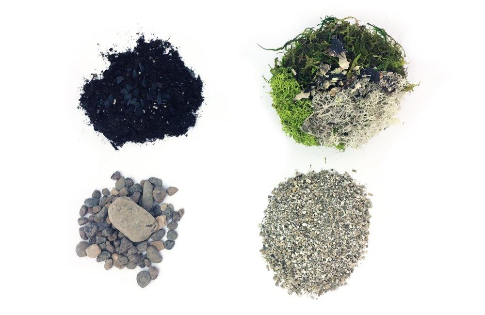 Cute Farms Terrarium Starter Kit | Moss, Vermiculite, Soil, Pebbles, Plant Food & Finishing Tools (Medium Kit) by Cute Farms (Image #3)