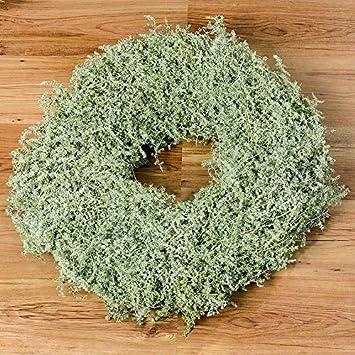 9c53eb67a7 Boltze 1008578 Asparagus Kranz 60 cm (1 Stück): Amazon.de: Küche ...