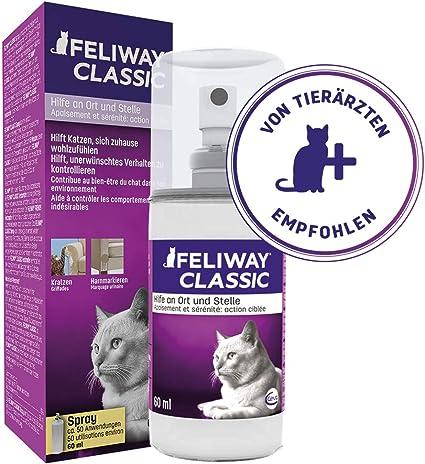 FELIWAY Classic - Antiestrés para gatos - Transportín, Viajes, Marcaje con orina localizado, Arañazos verticales localizados - Spray 60 ml: Amazon.es: Productos para mascotas
