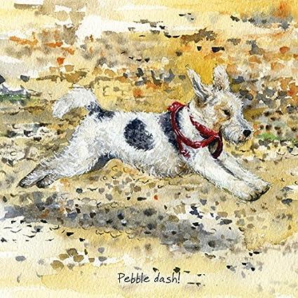 Birthday Blank Card Wire Hair Fox Terrier Dog Free /& Fast Postage!
