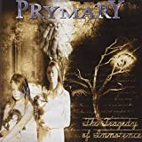 The Tragedy of Innocence by Prymary